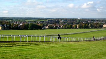 1200px-Horses_in_Newmarket